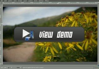 Lens Distortion Demo