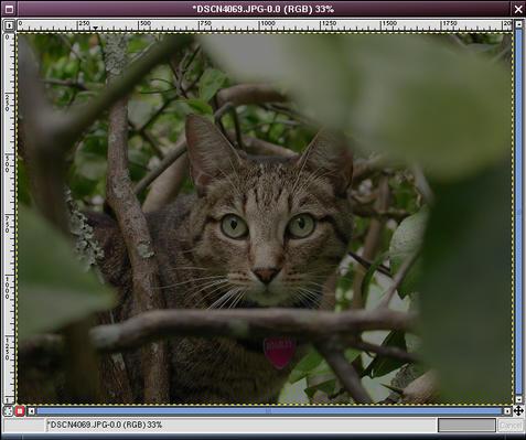 image-channel.jpg