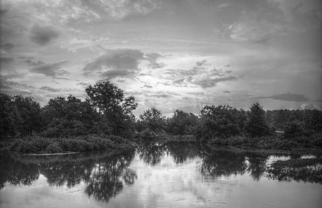 Langan Park by Pat David